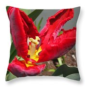 Parrot Tulip Named Rococo Throw Pillow