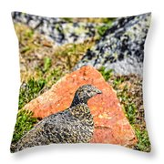Partridge 2 Throw Pillow