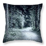Path In Dark Forest Throw Pillow by Elena Elisseeva