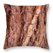 Patterns In The Wood Throw Pillow
