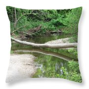 Peaceful Crossing Throw Pillow