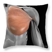 Pectoralis Major Muscle Throw Pillow