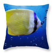 Perch Throw Pillow