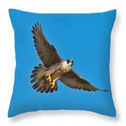 Peregrine Falcon In Flight Throw Pillow