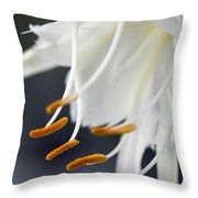 Peruvian Daffodil Named Advance Throw Pillow