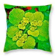 Petty Spurge In Peterhof-russia  Throw Pillow