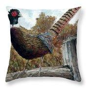 Pheasant On Fence Throw Pillow