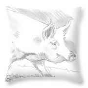 Pig Drawing Throw Pillow