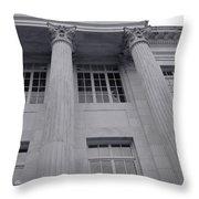 Pillars And Windows Throw Pillow