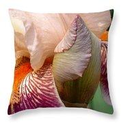 Pink And Purple Iris Throw Pillow