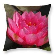 Pink Bloom... Throw Pillow