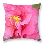 Pink Camellia Closeup With Light Throw Pillow
