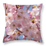 Sunlight On Spring Blossoms Throw Pillow