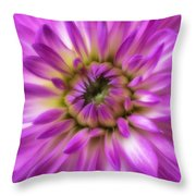 Pink Dahlia Close Up Throw Pillow