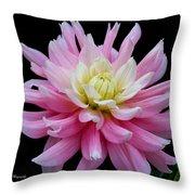 Pink Dahlia Throw Pillow