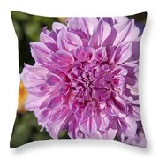 Pink Dahlia Throw Pillow by Peter French