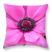 Pink Anemone  Throw Pillow