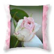 Pink Lady 2013 Throw Pillow