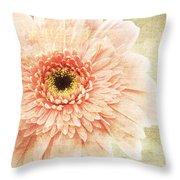 1 Pink Painterly Gerber Daisy Throw Pillow