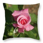 Pink Rose... Throw Pillow