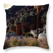 Plants On Landscape, Anza Borrego Throw Pillow