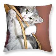 Playful Kitten Throw Pillow