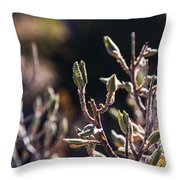 Pods Throw Pillow