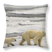 Polar Bear With Cub Throw Pillow