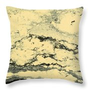 Pollen Of Black Spruce Trees On Water Surface Throw Pillow