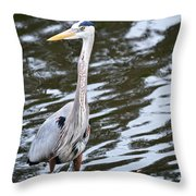 Pond's Edge Throw Pillow