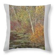 Pondside Pastel Throw Pillow