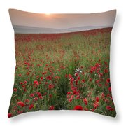 Poppy Field Landscape In Summer Countryside Sunrise Throw Pillow