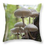 Porcelain Fungus Throw Pillow