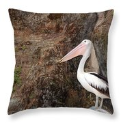 Portrait Of An Australian Pelican Throw Pillow