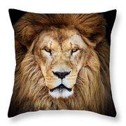 Portrait Of Huge Beautiful Male African Lion Against Black Backg Throw Pillow
