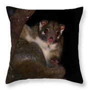 Possum Throw Pillow