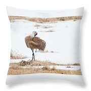 Preening Crane Throw Pillow