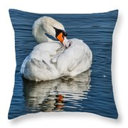 Preening The Feathers Throw Pillow