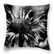 Pretty In Pink Throw Pillow