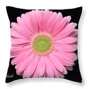 Pretty Pink Gerbera Daisy Throw Pillow
