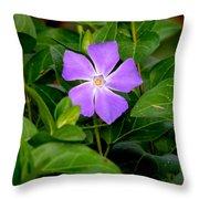 Pretty Purple Pinwheel Throw Pillow