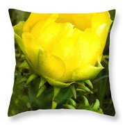 Prickly Pear Cactus Bloom  Throw Pillow