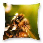 Process Of Pollination Throw Pillow