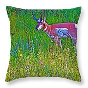 Pronghorn Among Wildflowers In Custer State Park-south Dakota Throw Pillow