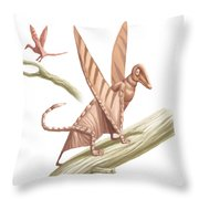 Pterandon, Illustration Throw Pillow
