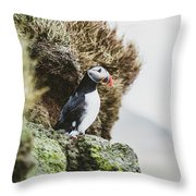 Puffins On The Islet Of Mykines, Faroe Throw Pillow