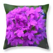 Purely Purple Throw Pillow
