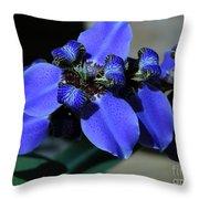 Purple Iris 2 Throw Pillow