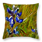 Pygmy-leaved Lupine In Antelope Valley Poppy Preserve-california Throw Pillow
