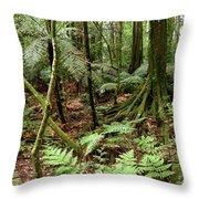 Rain Forest Throw Pillow